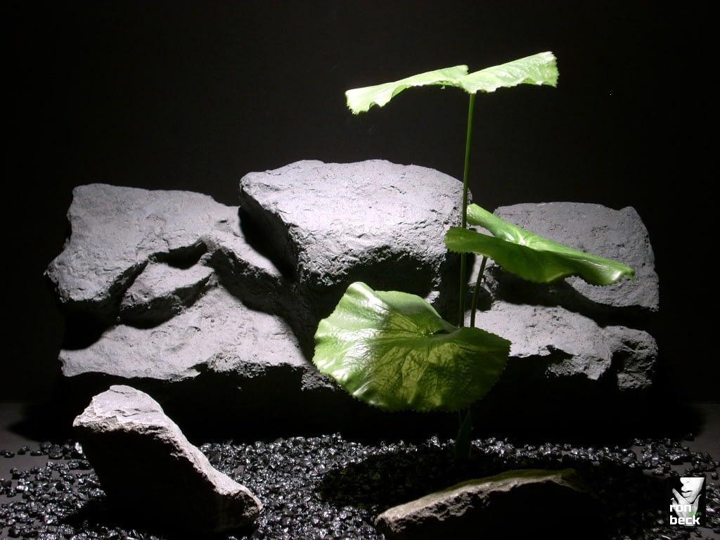 reptile plant lotus leaves sap403 silk latex ron beck designs