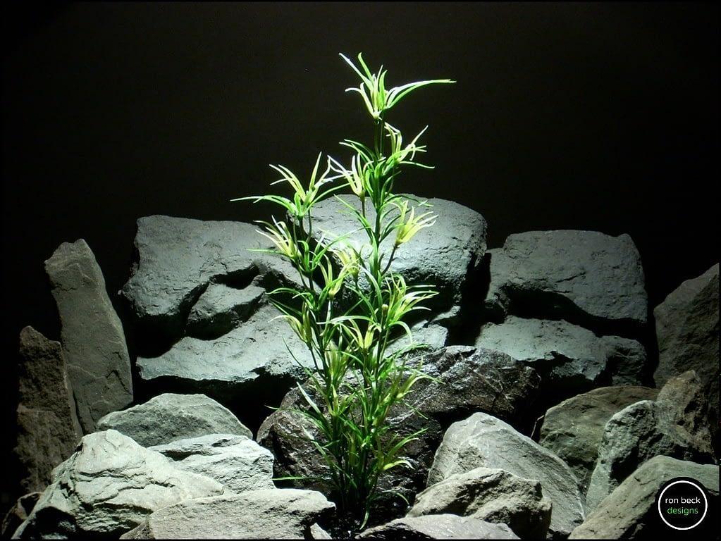 faux aquarium plant asparagus varegated pap206