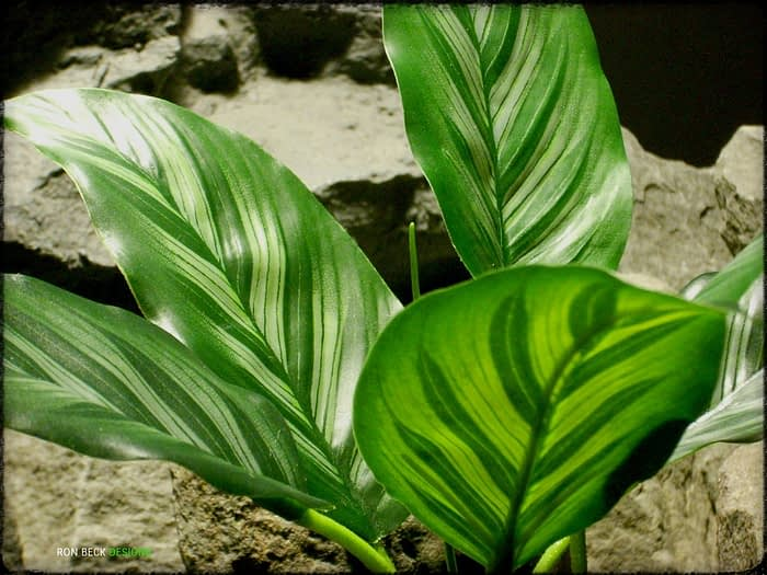 Artificial Chinese Evergreen Leaves - Artificial Silk Reptile Plant srp329 2