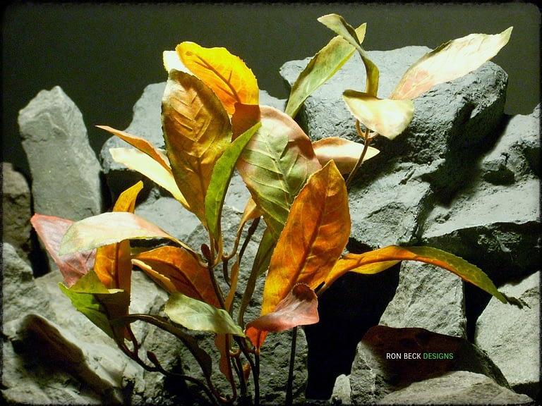 Mountain Laurel Fall Colors srp313 silk ron beck designs 2