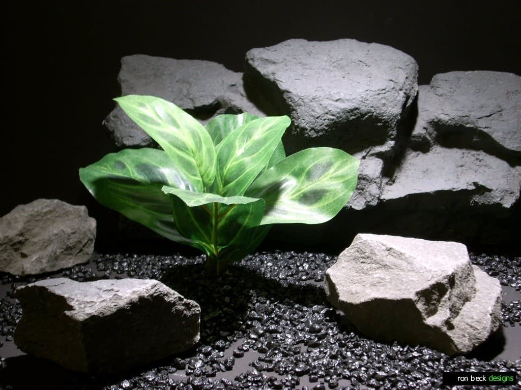 silk aquarium plants prayer plant sap409 ron beck designs
