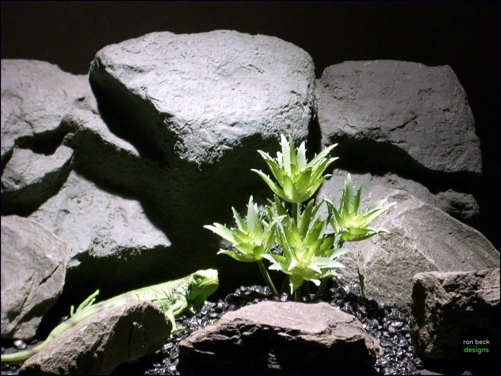reptile habitat plants succulent stars prp066 plstc. ron beck designs