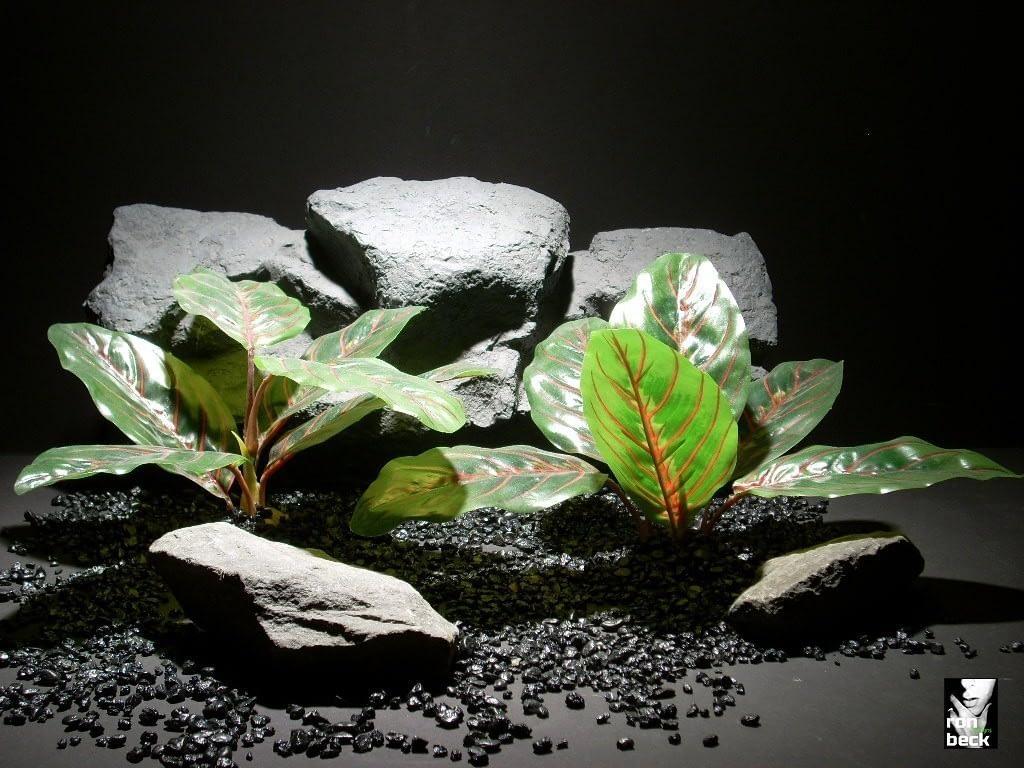 reptile habitat plants real touch prayer plant pair sap381 silk latex  ron beck designs