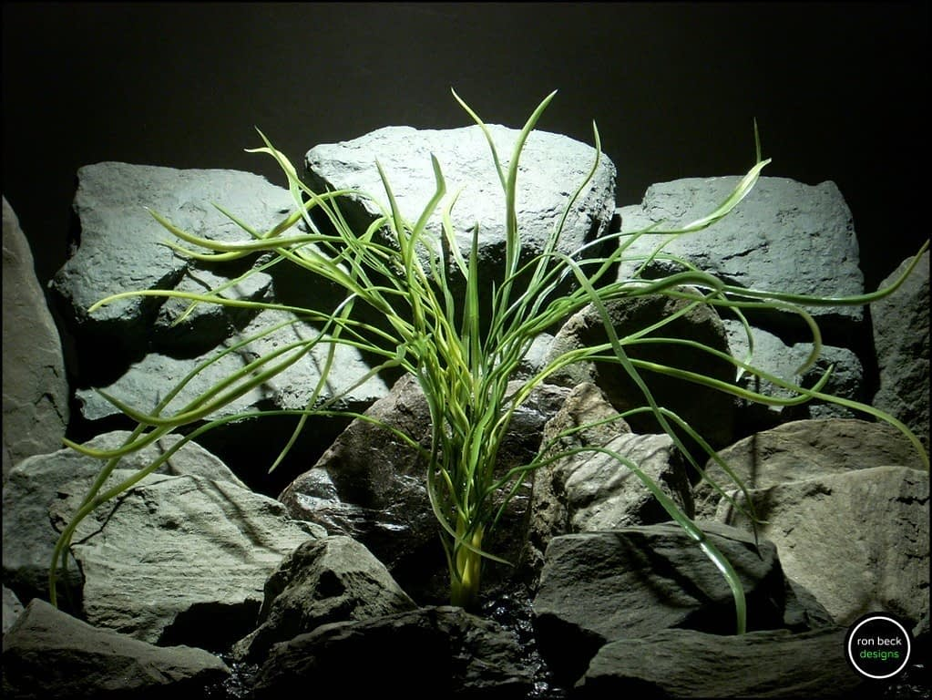 artificial aquarium plant pearl grass from ron beck designs. pap195 greens