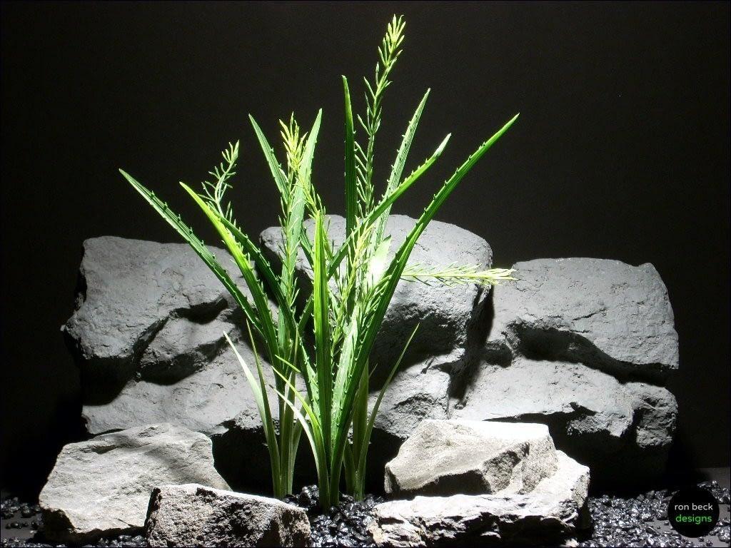 aquarium plants spiked blades pap044 plstc. plot ron beck designs