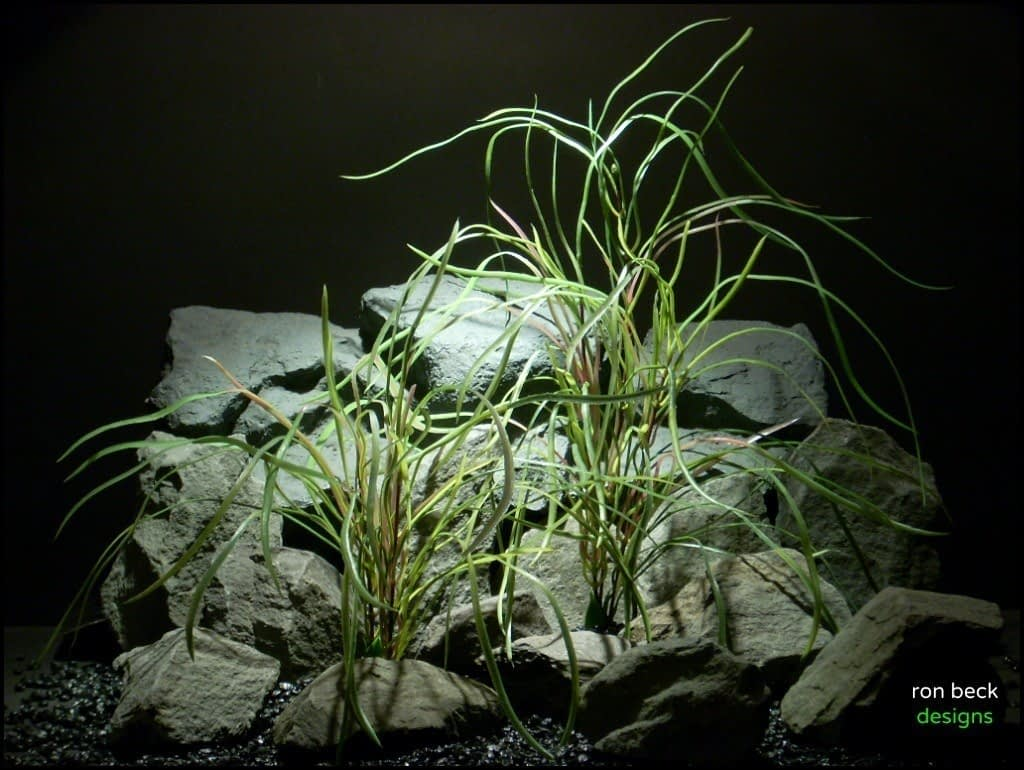 plastic aquarium plants pearl grass pair pap150 from ron beck designs