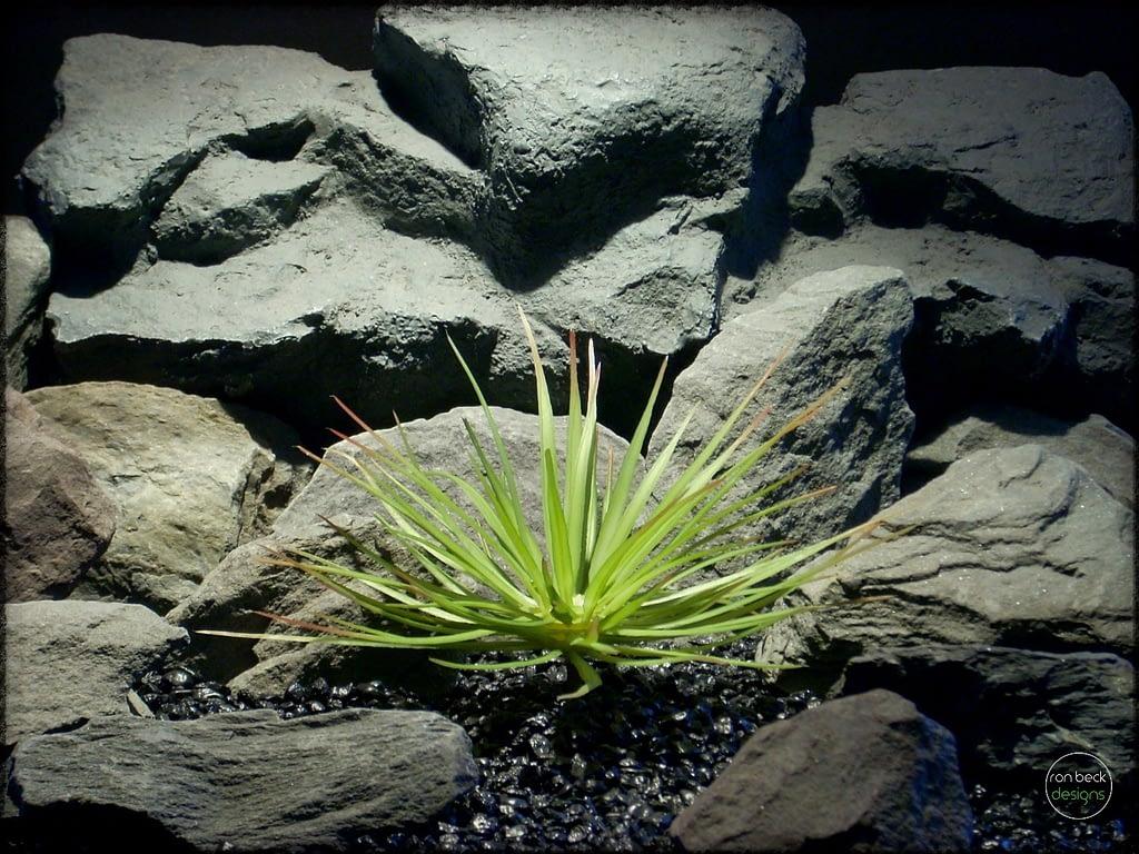 Hedgehog Agave - Artificial Reptile Plant Succulent - prp290