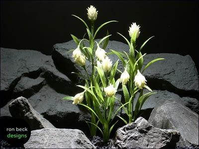 plastic aquarium plants protea white plot parp056 rpn beck designs