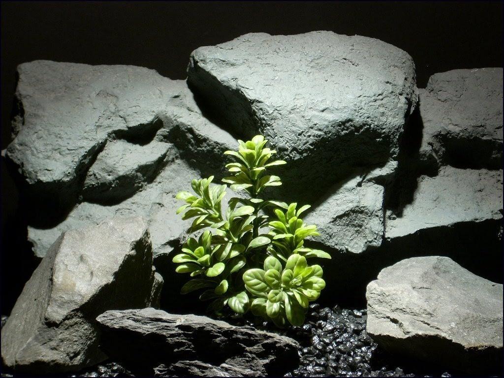 aquarium plants wild bush parp052 plstc. ron beck designs