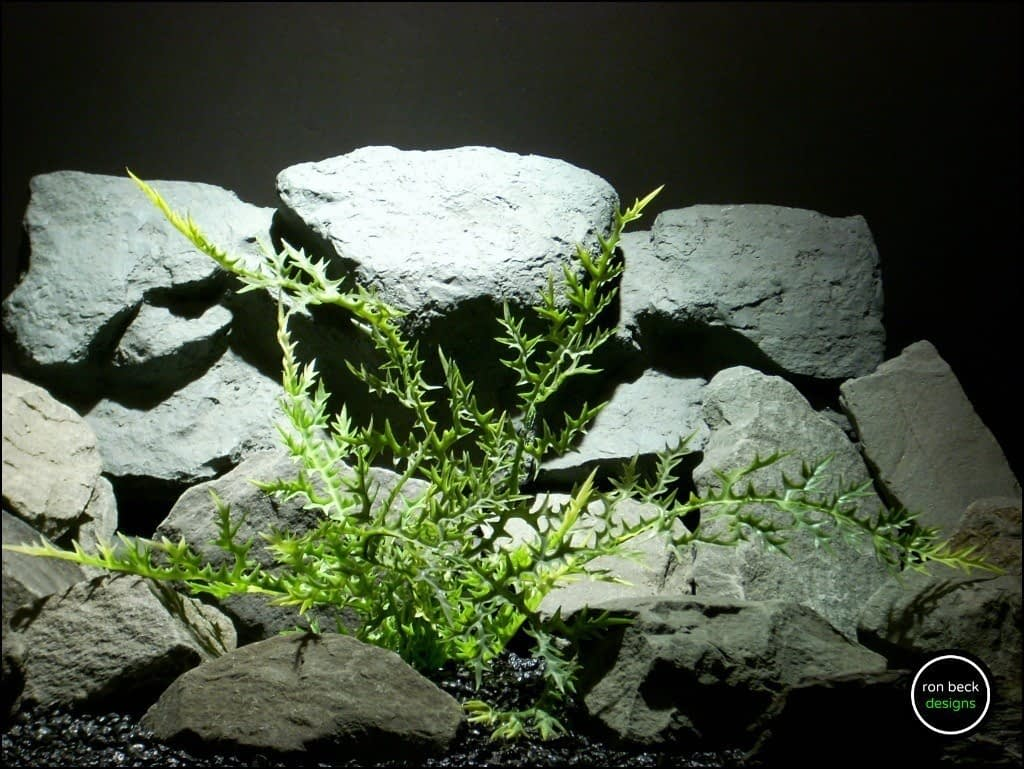 plastic aquarium plant dragons breath fern pap167 from ron beck designs