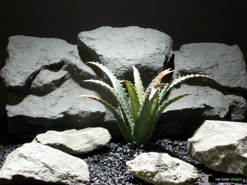 reptile habitat plants succulent agave pap208 plstc. ron beck designs