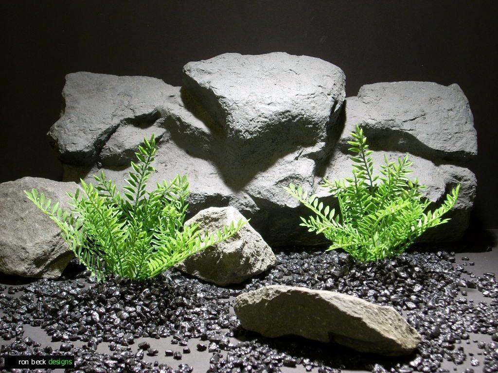 aquarium plants leafy leaves mini pap200 ron beck designs