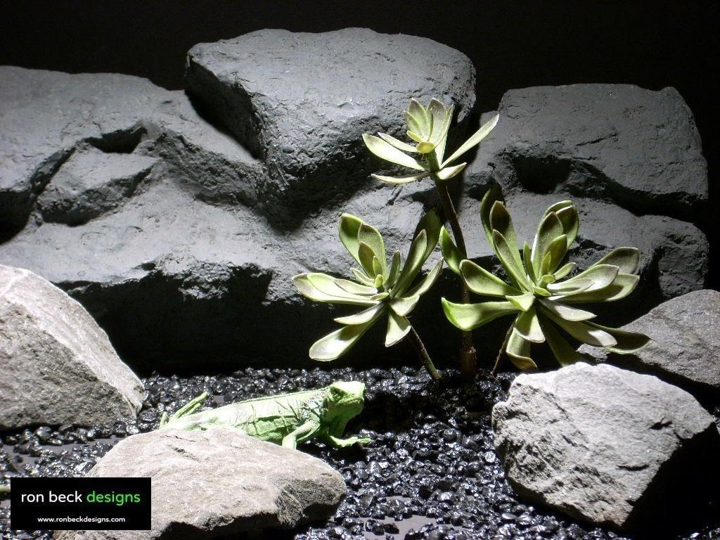 reptile habitat plants succulent 3pcs prp005  ron beck designs