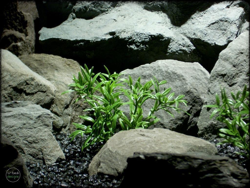 dwarf hygrophila artificial aquarium plants | ron beck designs pap273 2