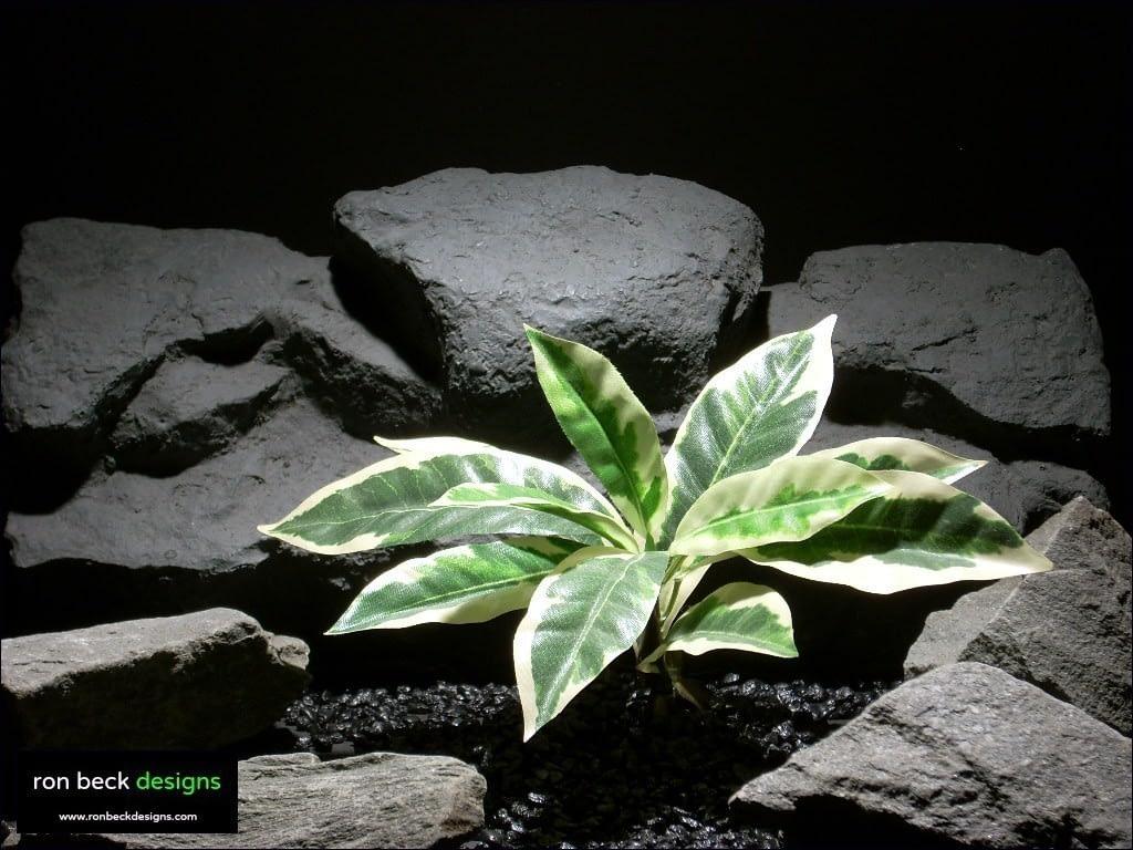 reptile habitat plants croton leaf bush sarp021 silk  ron beck designs