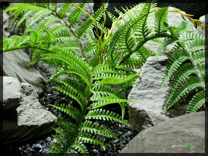 Artificial Plastic Fern - Artificial Reptile Plant - prp330 2