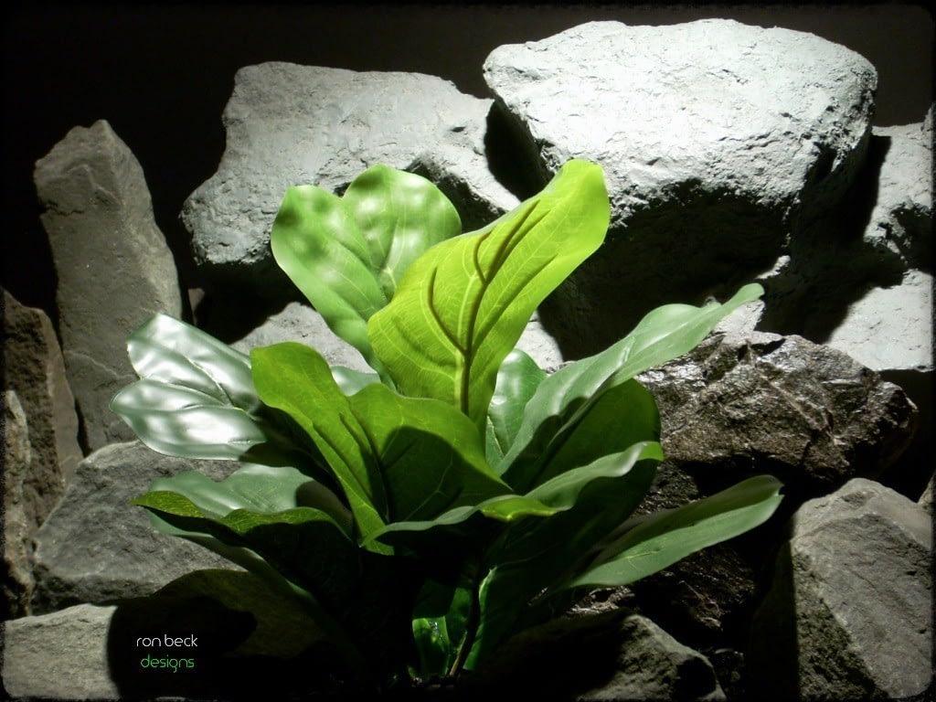 silk reptile terrarium plant fiddle leaf bush ron beck designs srp214 2
