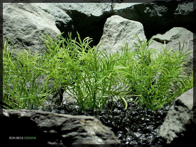 Guppy Grass Plot - Artificial Aquarium Plant - parp321 2