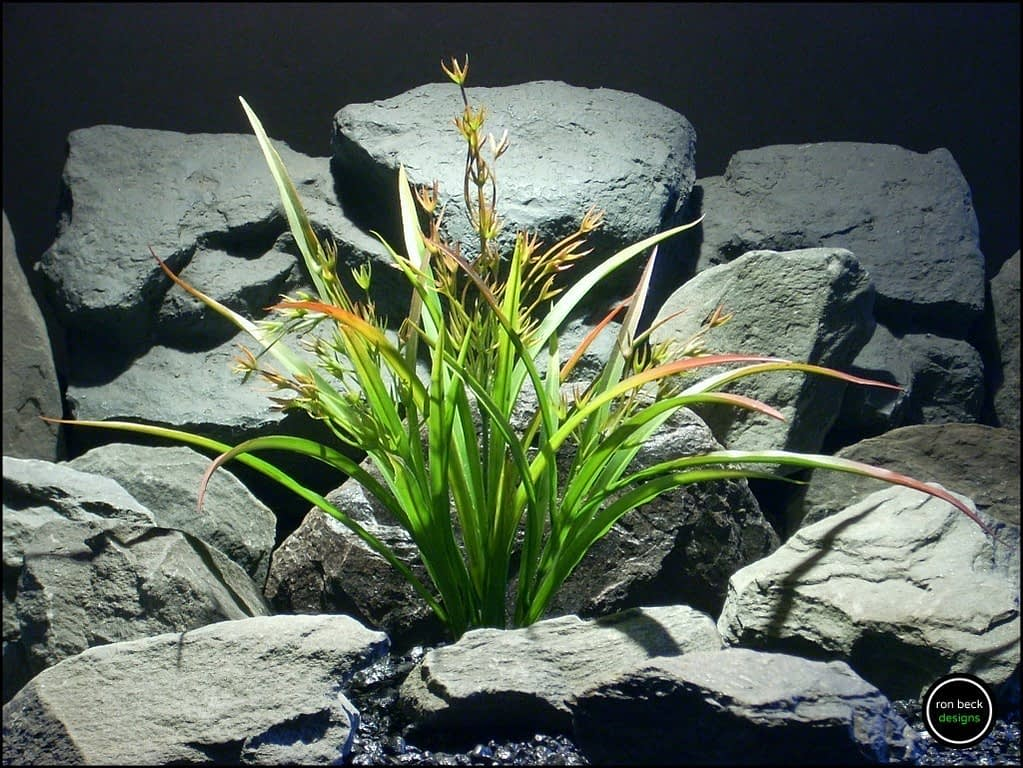 faux reptile plant oat grass from ron beck designs. prp203