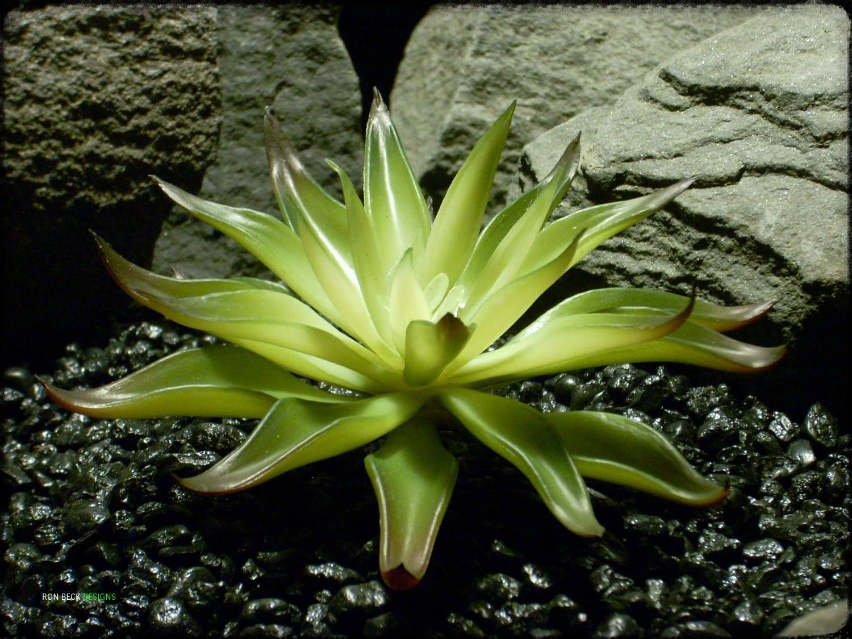 Artificial Agave Desmettiana Variegata - Reptile Plant prs326 2