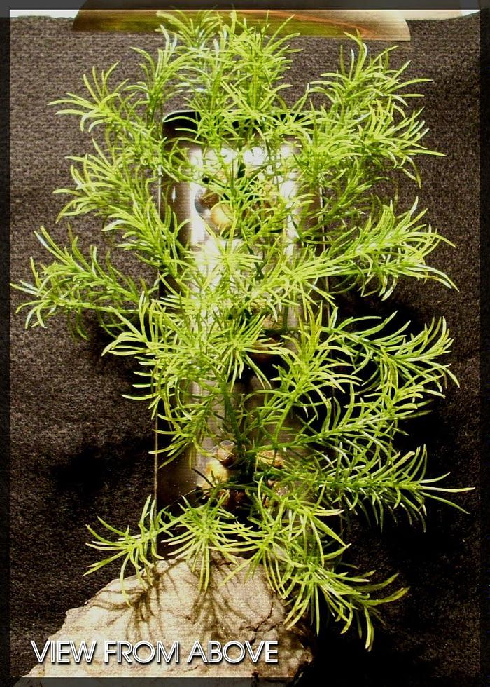 Guppy Grass Plot - Artificial Aquarium Plant - parp321 3