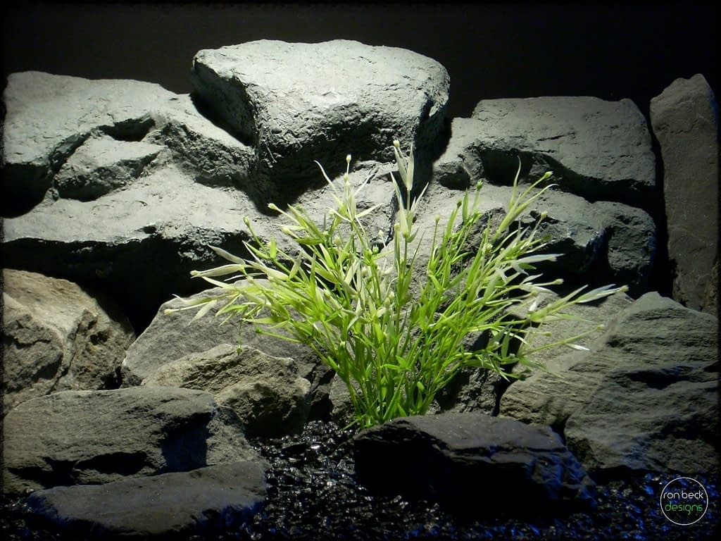 Water Grass   Artificial Aquarium Plant pap274