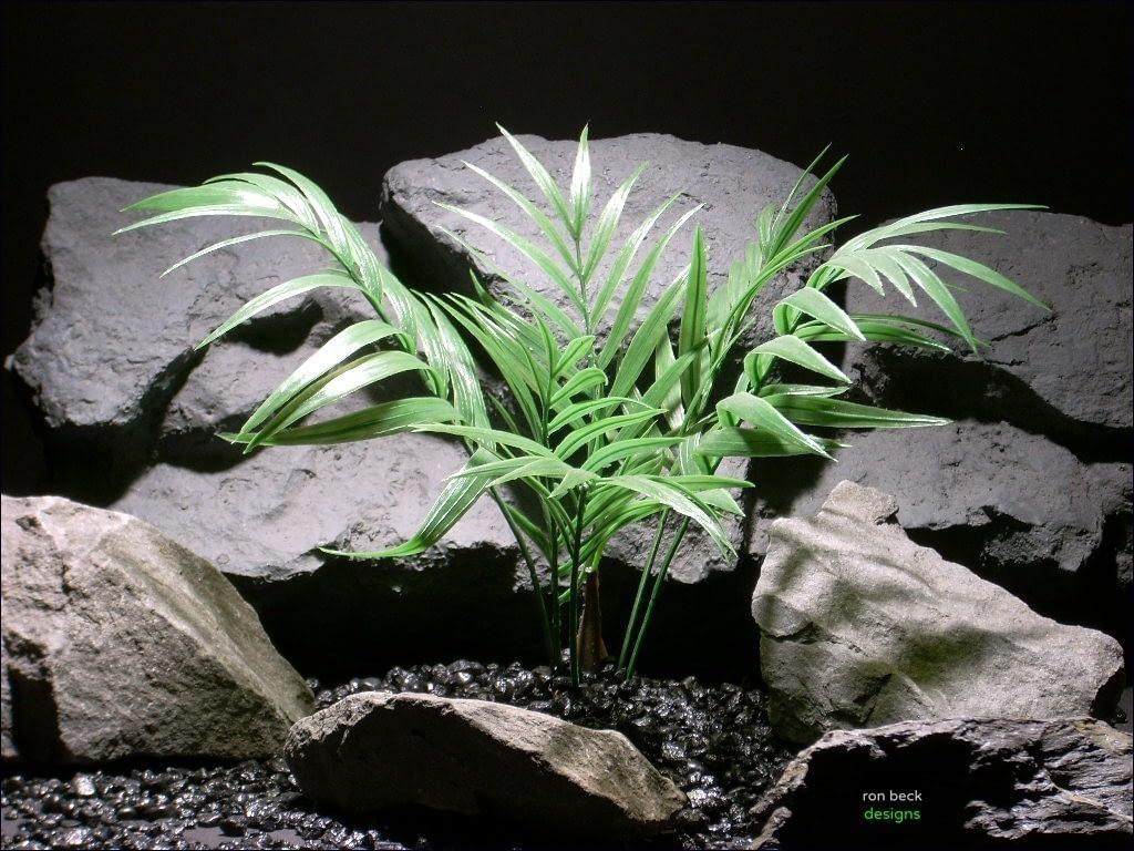 aquarium plants palm bush parp036 plstc.  ron beck designs