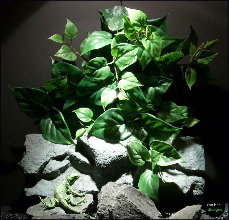 reptile habitat plants philo lvs wall mount silk hsrp062 ron beck designs
