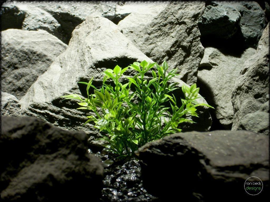 Mini Leaves | artificial Aquarium Plant pap271 2