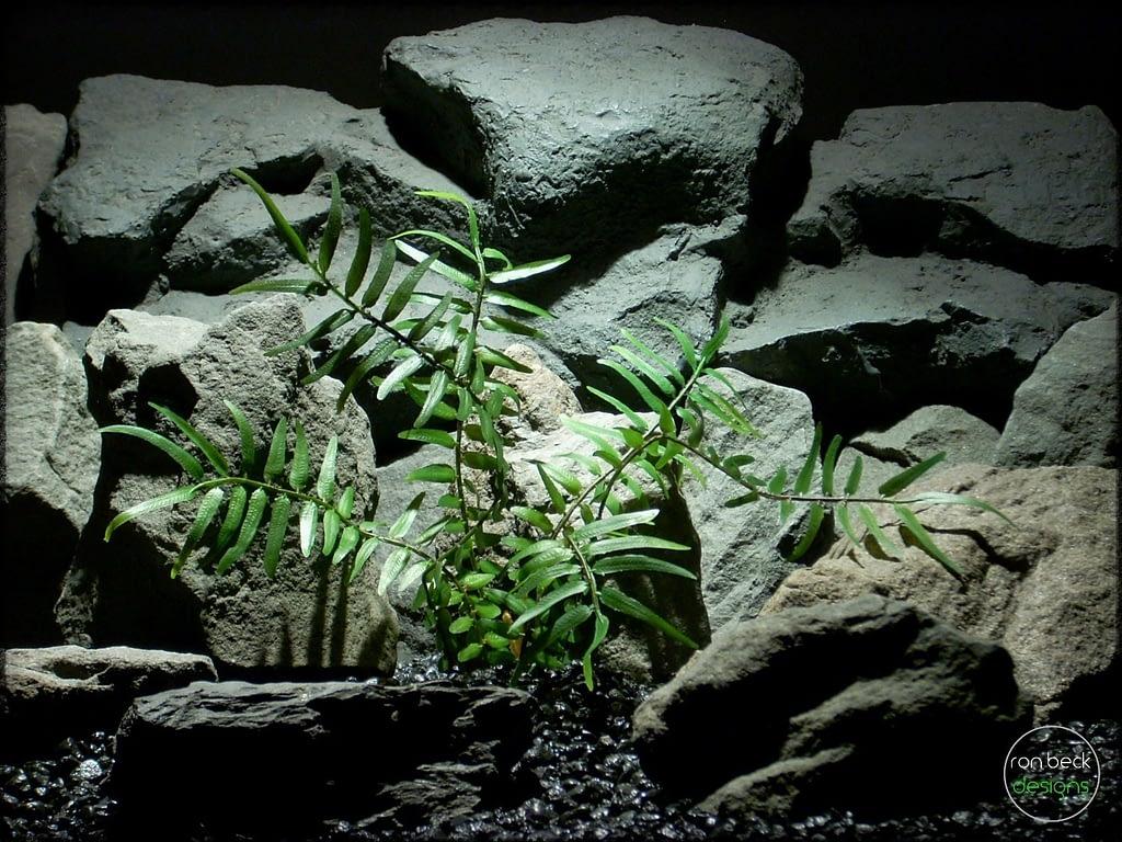 Artificial Boston Fern - Artificial Reptile Plant prp307