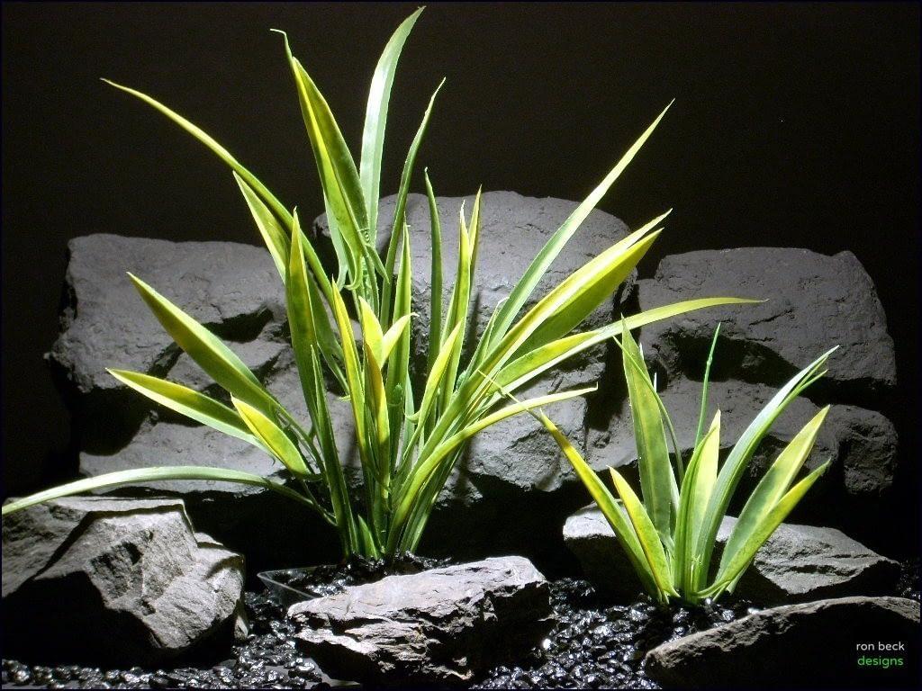 plastic aquarium plants arrowhead grass parp060 plstc. ron beck designs