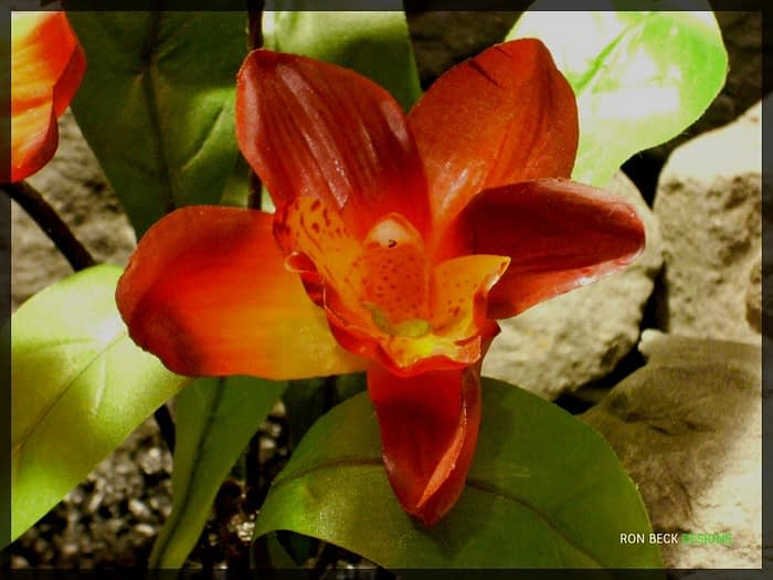 Artificial Red Orchid with leaves - Artificial Reptile Plant - srp327 3
