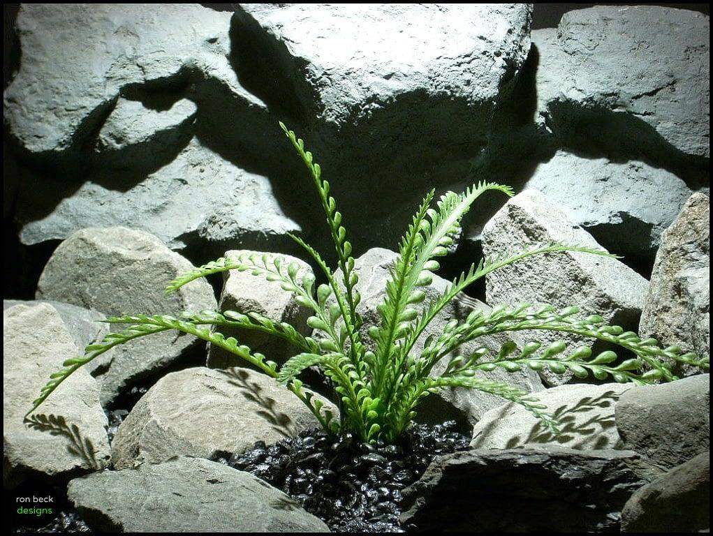 plastic aquarium plants  mini round leaf bush pap143 from ron beck designs