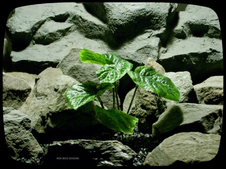 Artificial Peperomia Bush - Artificial Reptile Terrarium Plant srp328
