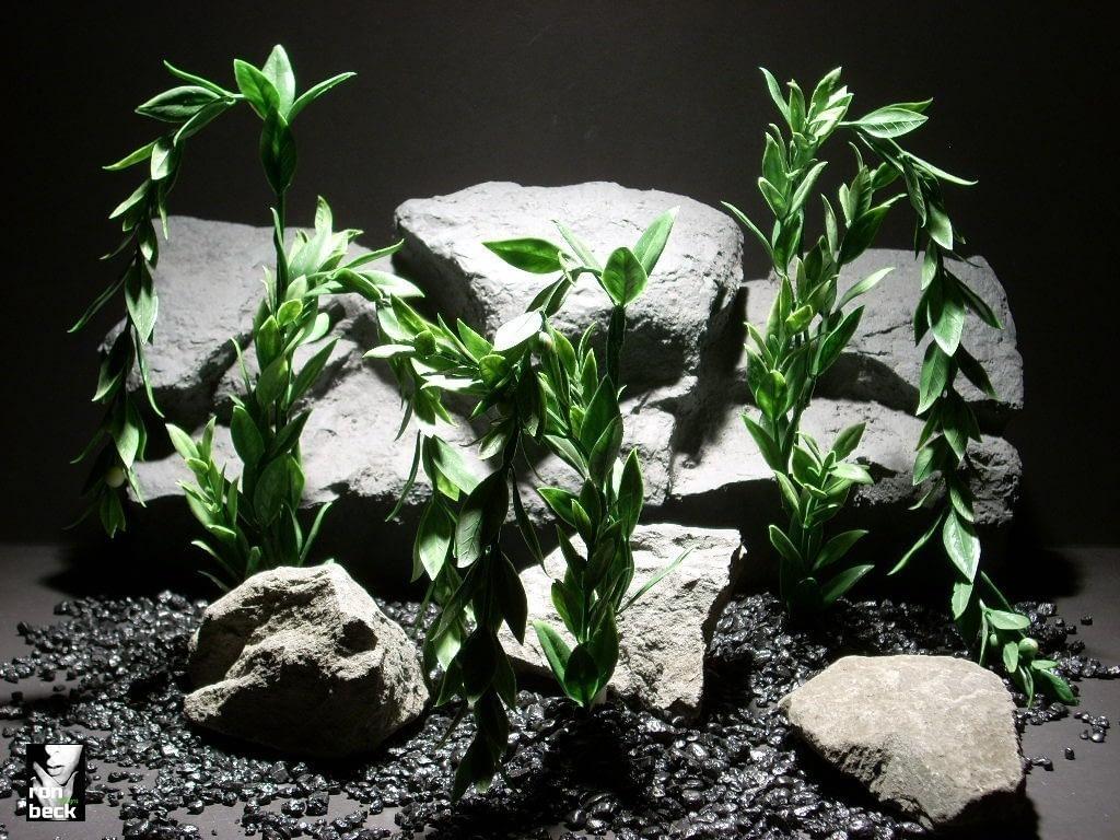 aquarium plants donkey tail set 3 pap196 plastic  ron beck designs