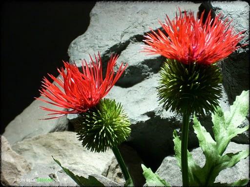 Artificial Cactus Flower - Artificial Reptile Amphibian Plant Cactus prp295 3