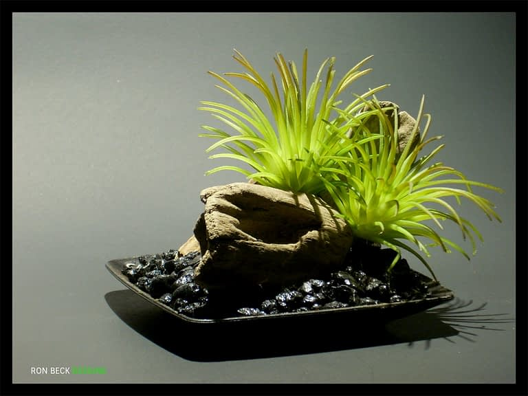 1 Scape - Artificial Reptile Decor - Home Decor - Driftwood - Succulents