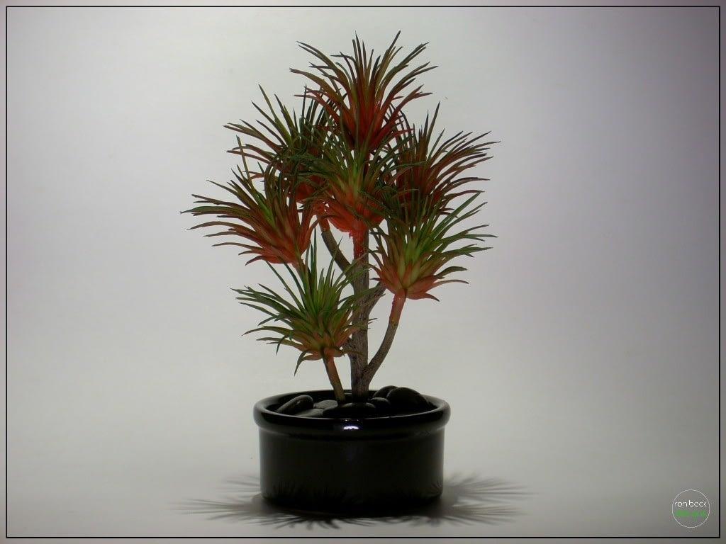 Artificial Succulent | Home Decor prs259