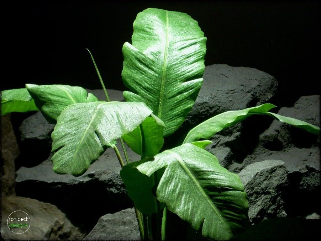 Silk Reptile Plants: Artificial Banana Plant Leaves. Custom Order 2