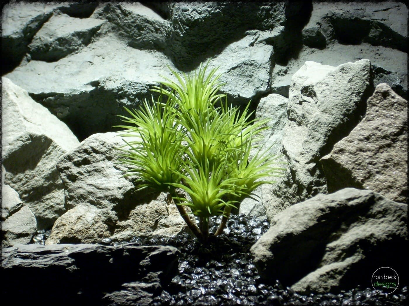 Artificial Tillandsia Ionantha - Artificial Reptile Plant prp309 2