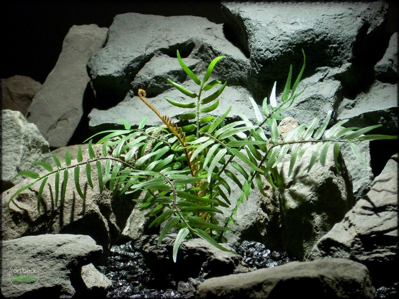 Artificial Boston Fern - Artificial Reptile Plant prp308