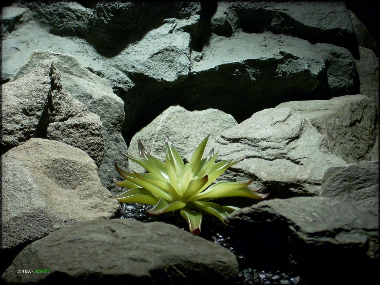 Artificial Agave Desmettiana Variegata - Reptile Plant prs326