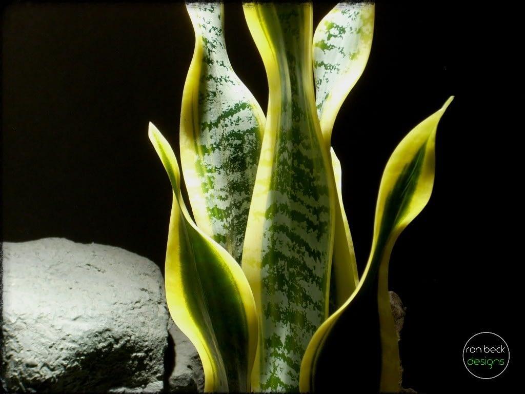 Artificial Snake Plant Sansevieria - reptile plant - ron beck designs prp285 3