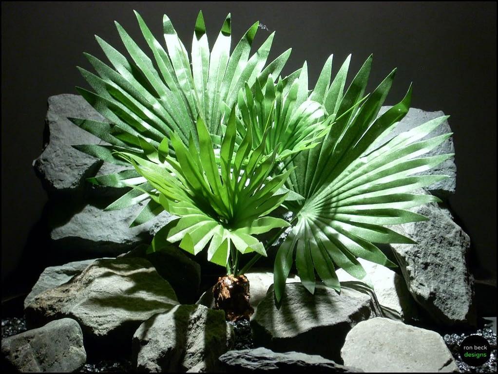 silk reptile snake habitat plant bush fan palm custom by ron beck designs