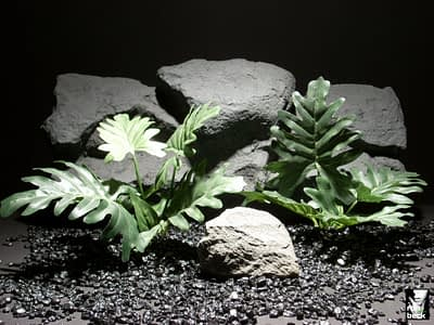 silk aquarium plants split leaf philo sap307 ron beck designs