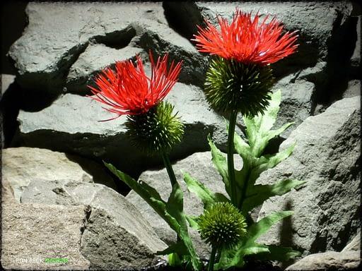 Artificial Cactus Flower - Artificial Reptile Amphibian Plant Cactus prp295 2