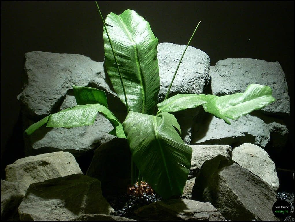 silk reptile or snake habitat plant banana leaves srp116 by ron beck designs