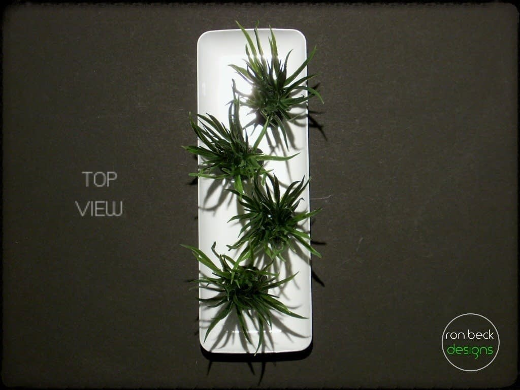 plastic aquarium plants: Atlantis grass plot pap240 3