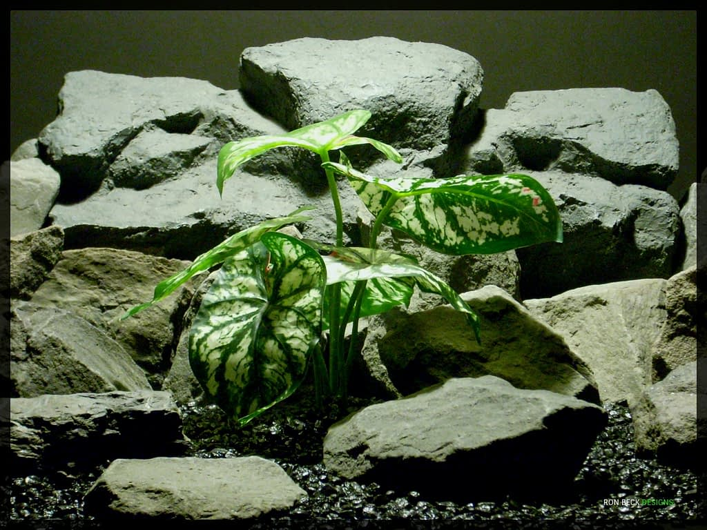Artificial Variegated Caladium - Artificial Reptile Habitat Plant - Real Touch srp336
