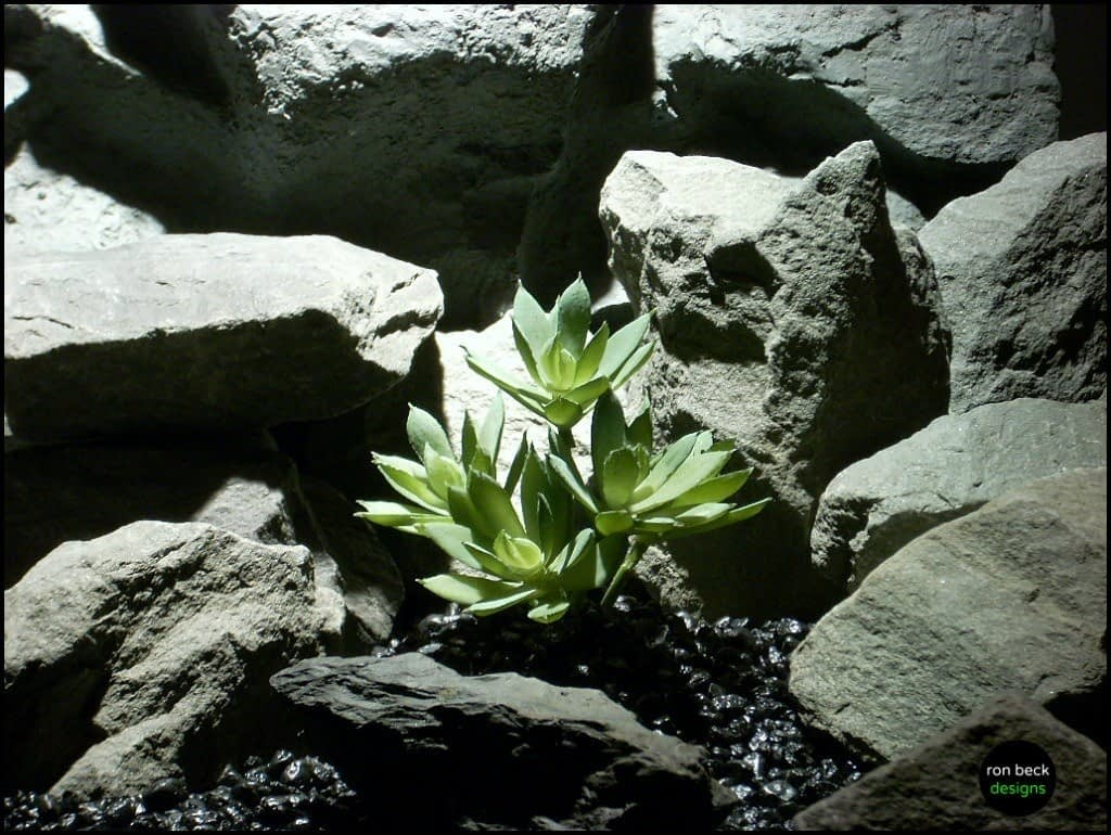 reptile plant snake habitat artificial succulent, prp126, from ron beck designs